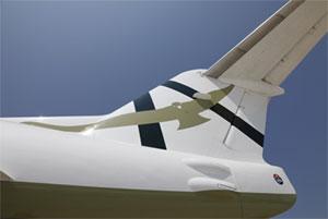 Particolare del Fokker 100 di Eagles Airlines