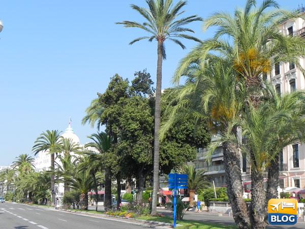 Sedie Blu Nizza : Le chaises bleues della promenade des angleis a nizza