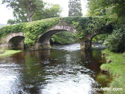 Ponte e ruscello